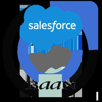 Baan and Salesforce