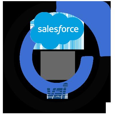 VAI Salesforce SK2