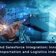 Nestsuite Salesforce Integration